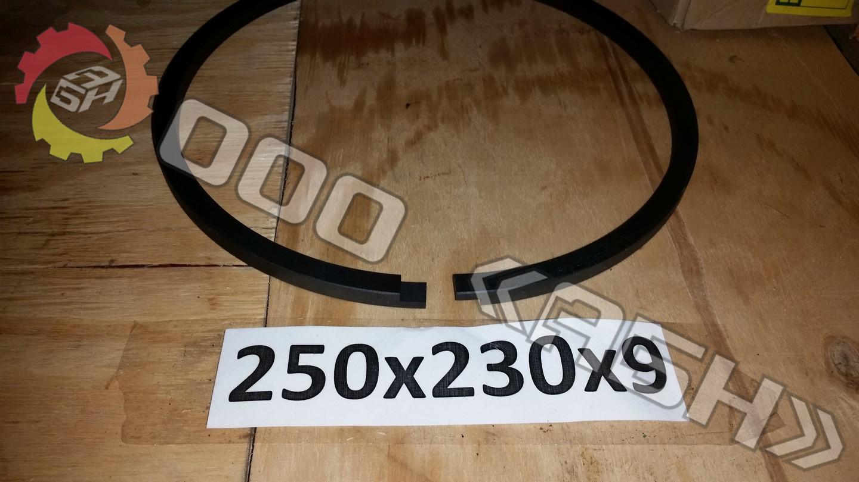 Поршневое кольцо 250x230x9